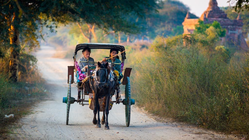 You can ride a horse cart around Bagan