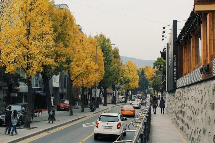 Samcheong-dong autumn korea (1)
