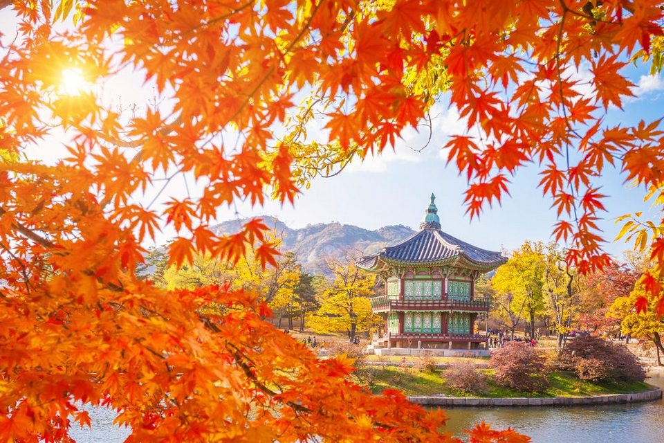 fall foliage forecast korea 2018 fall foliage korea 2018 when is autumn in korea (5)