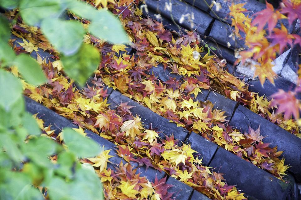 samcheongdong-autumn-1.4