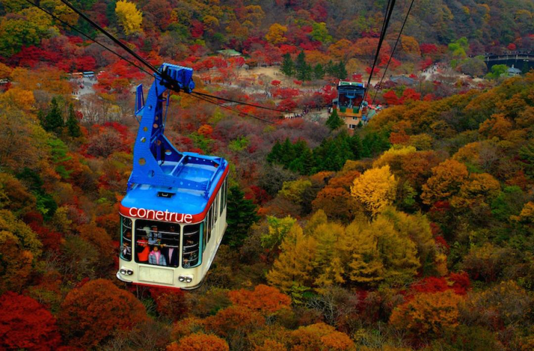 Admire Naejangsan National Park From The Cable Car Ride Living Nomads Travel Tips Guides News Information
