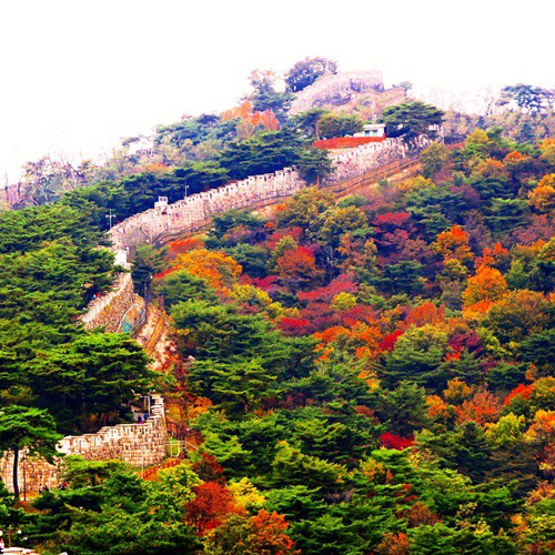 Bugaksan Fortress Wall (Seoul Fortress Wall)
