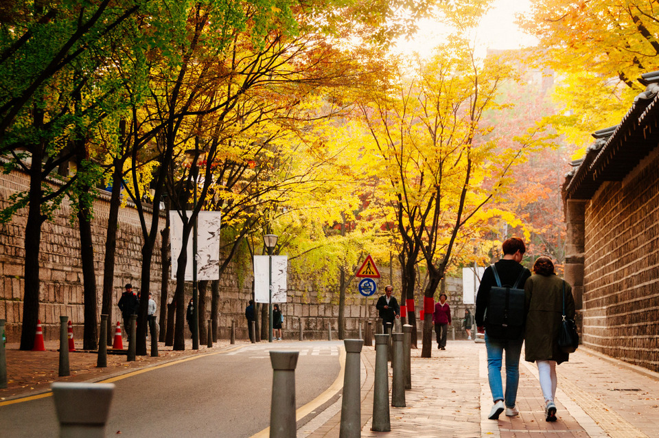 Deoksugung Doldam-gil road autumn seoul 5 days in seoul recommended seoul itinerary seoul itinerary 5 days what to do in seoul for 5 days