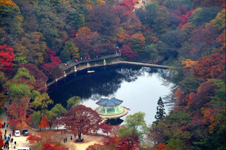 Naejangsan national park autumn4