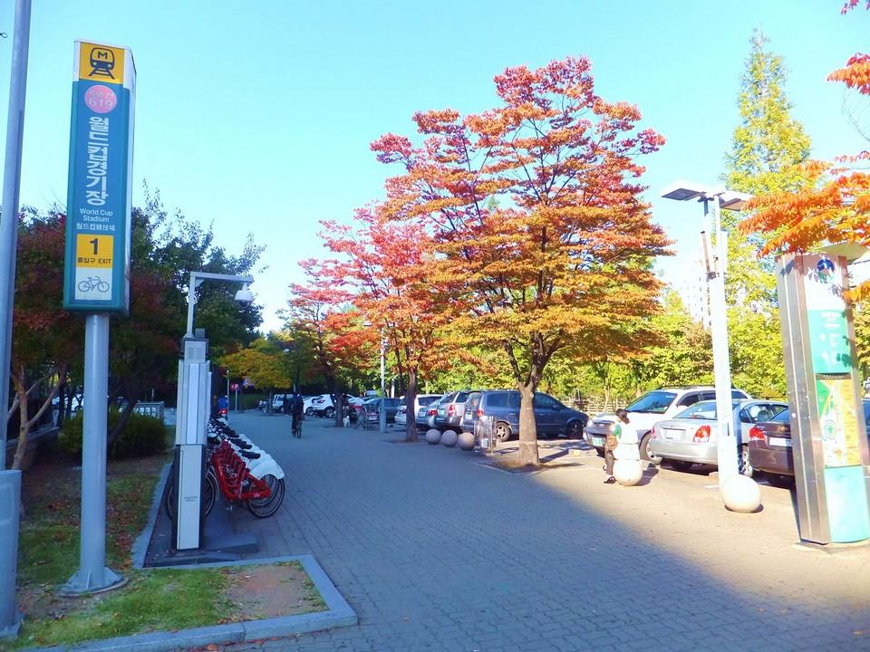 haneul-park-autumn seoul Foto by: korea fall foliage forecast 2018 blog.