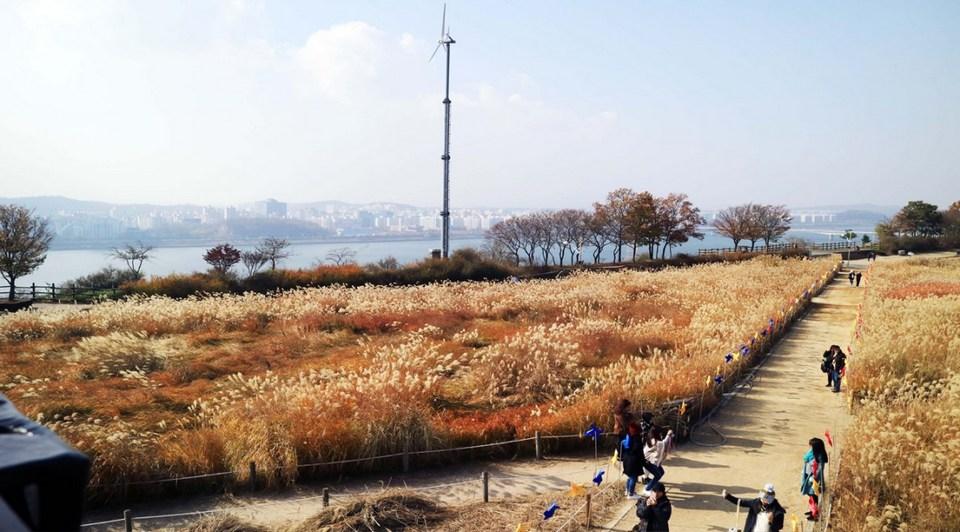 haneul-park-autumn seoul