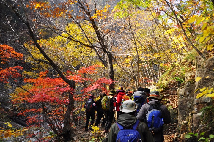 hiking korea autumn 2018 forecast blog