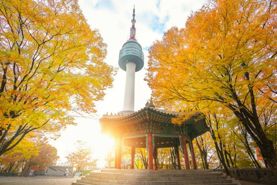 namsan autumn 2 Foto by: korea fall foliage forecast 2018 blog.