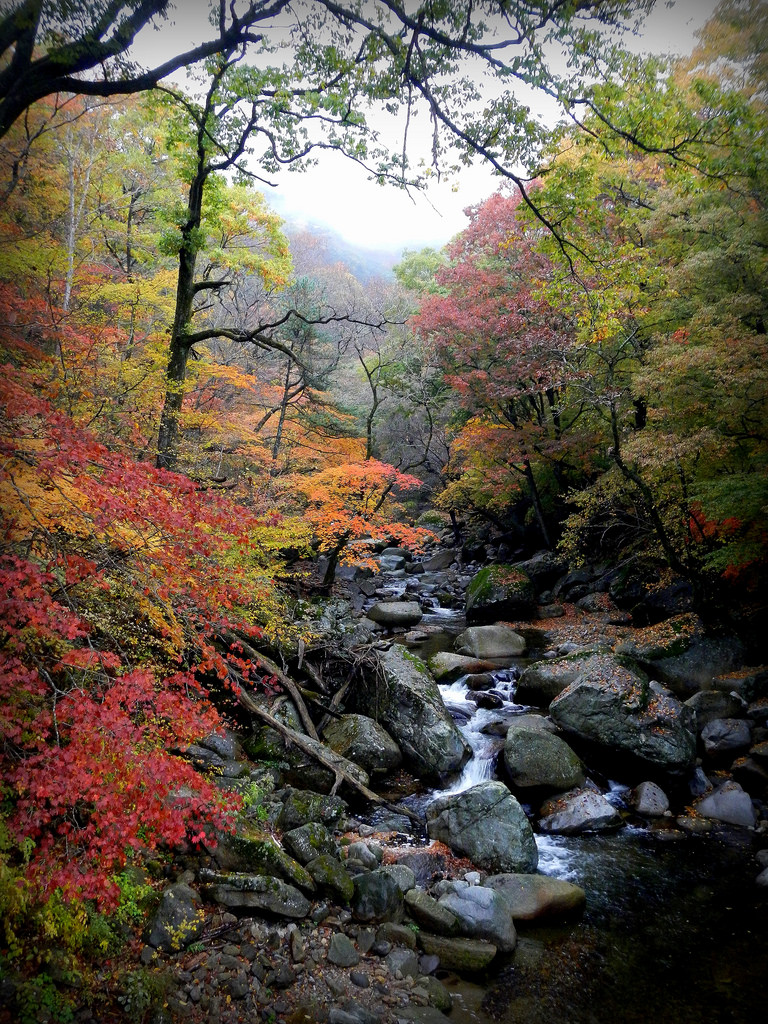 Autumn Colors in Korea - Gayasan National Park
