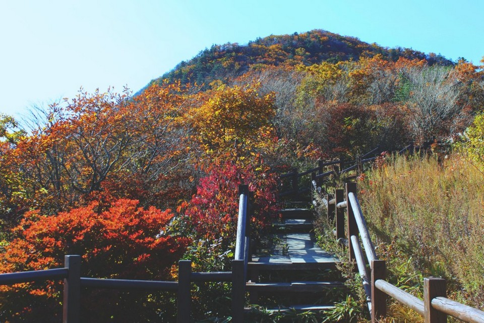 autumn-Jirisan National Park 2| busan fall foliage