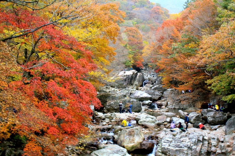 autumn-Jirisan National Park 2