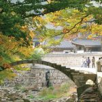 Autumn foliage in Busan — Top 6 Busan attractions in autumn & around