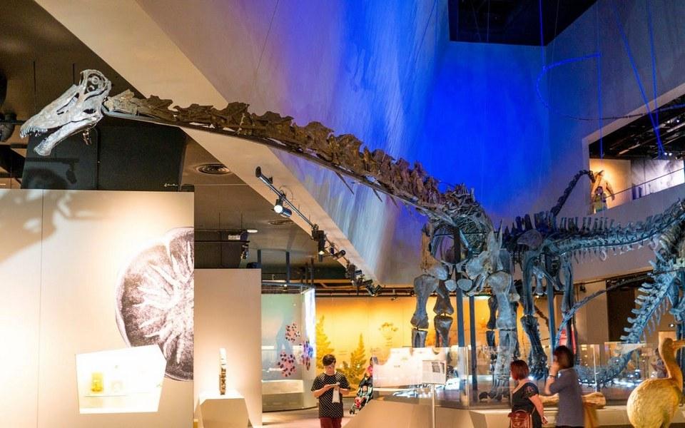 Lee Kong Chian Natural History Museum singapore