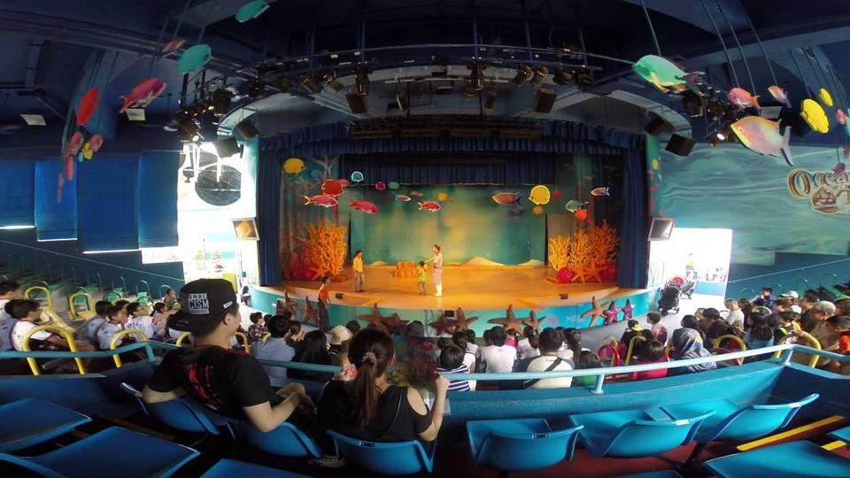 Sea Lion Fun Time Show (Ocean Park Hong Kong)