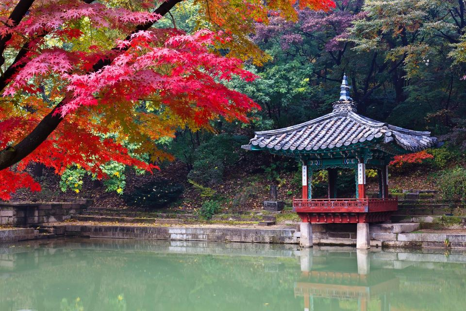 111029_changdeokgung_044