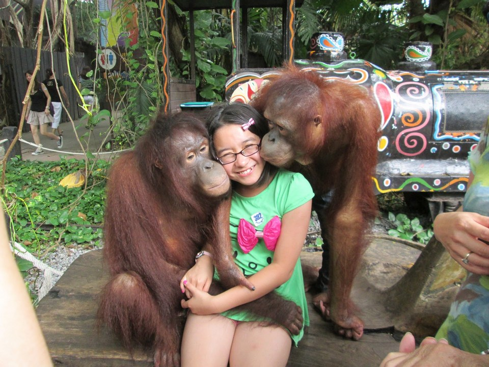 "Visitors can easily take photos with two ""cast"" at Orangutan"