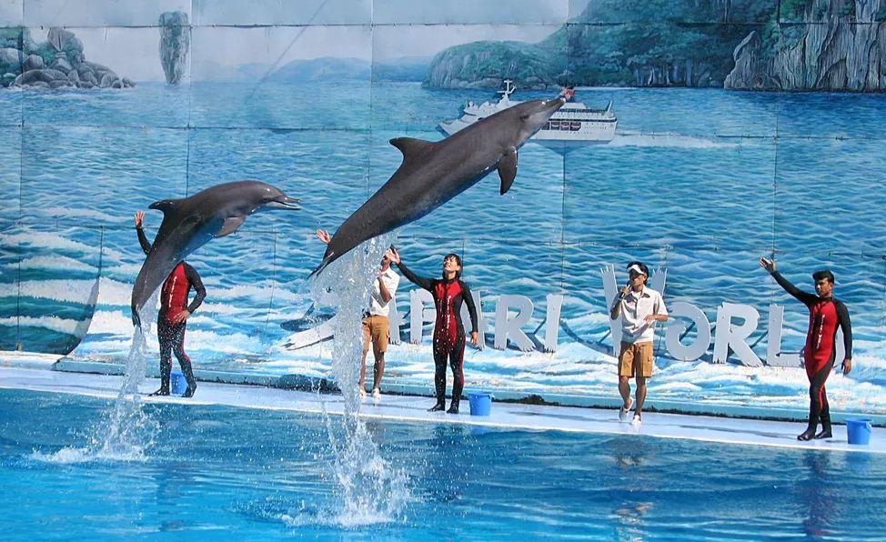 marine park safari world bangkok