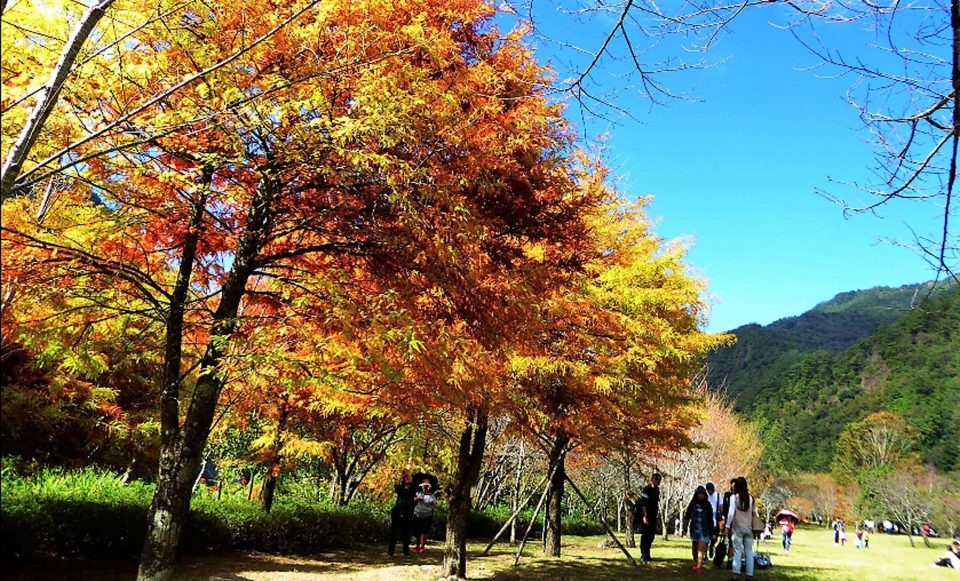 Taipingshan Yilan Picture: taipingshan national forest recreation area blog.