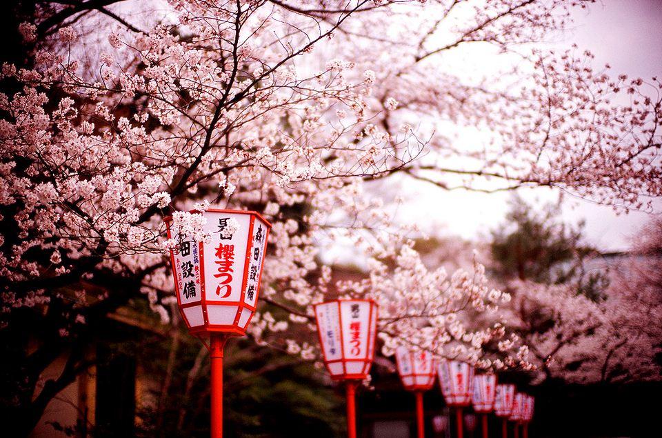 kyoto blog kyoto travel blog