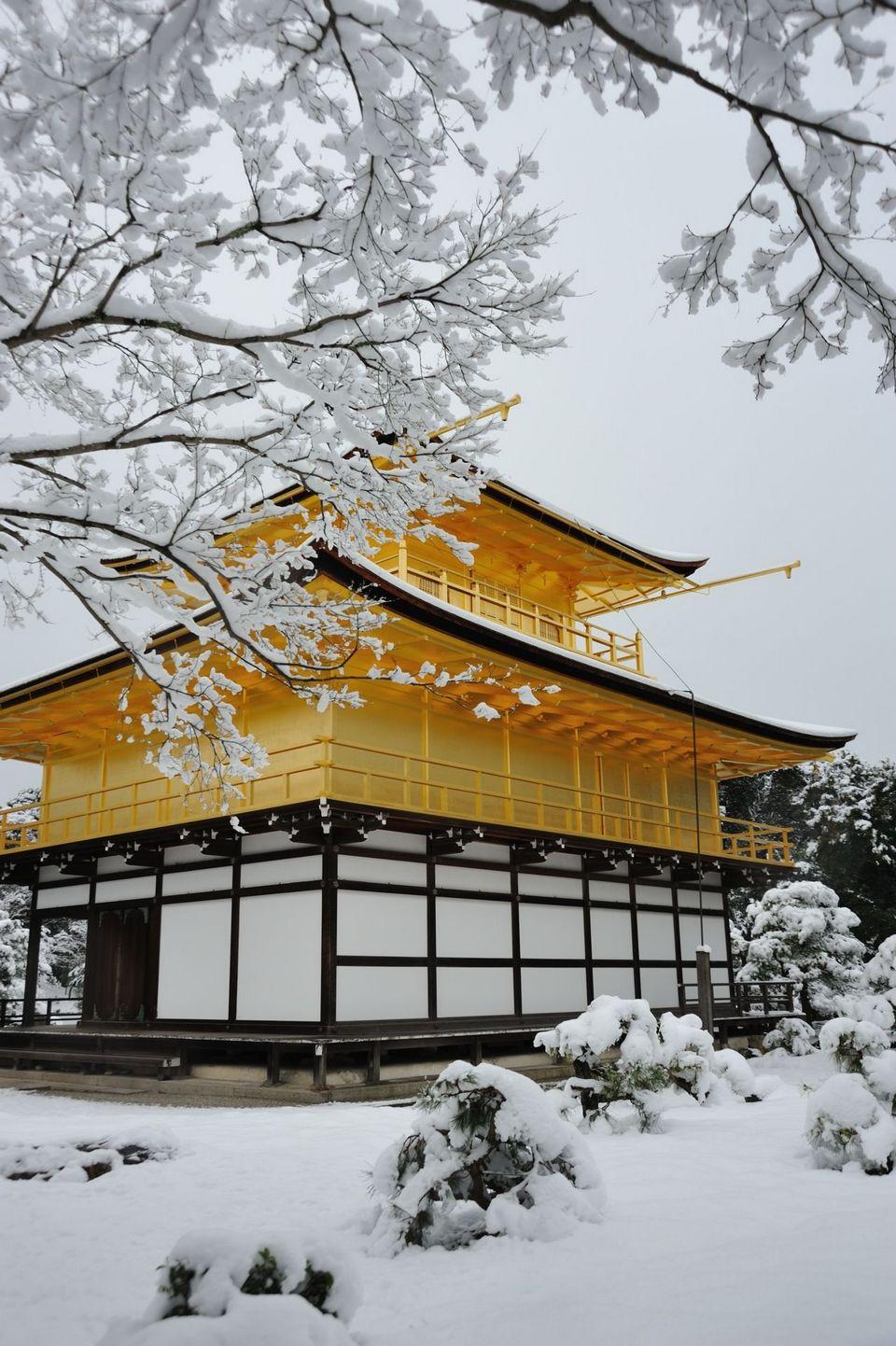 golden pavillion temple tokyo (1)