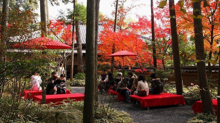 kinkakuji temple kyoto golden pavillion kyoto travel blog kyoto blog (3)