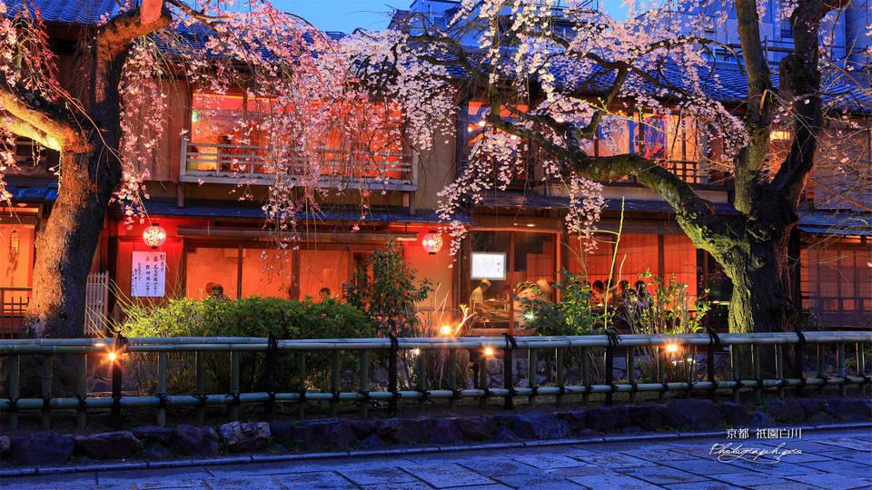 gion district geisha kyoto (1)
