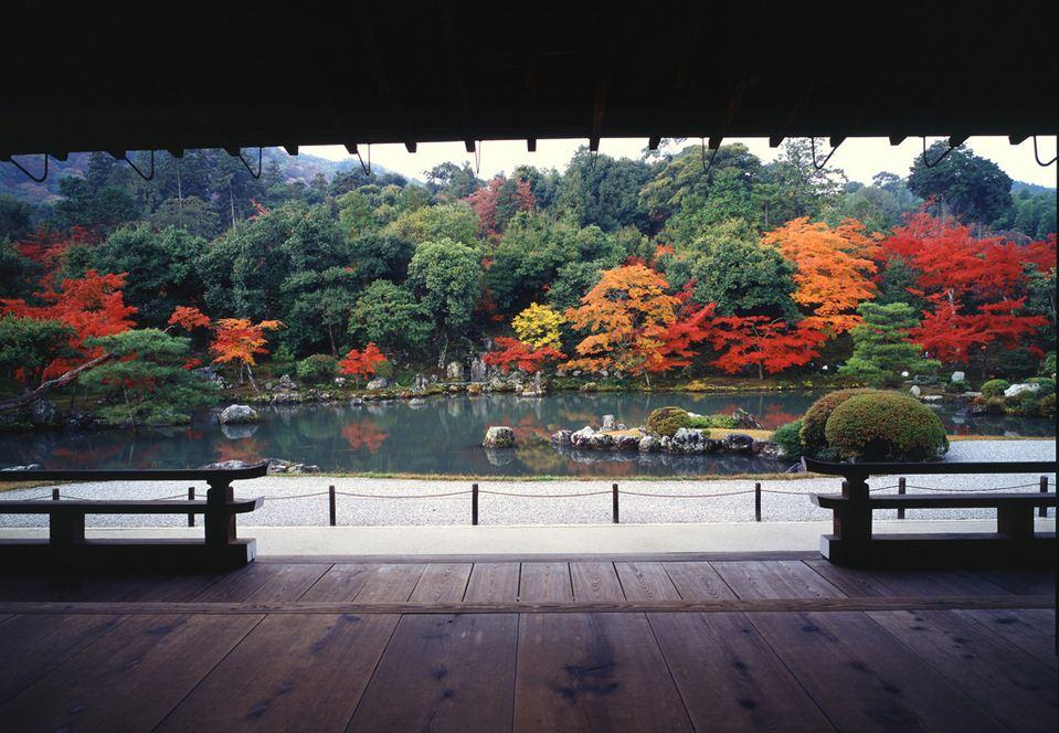 tenryuji-temple kyoto (2)