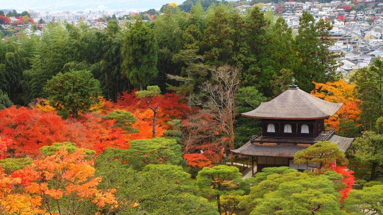 ginkaku-ji-find-travel.jp_