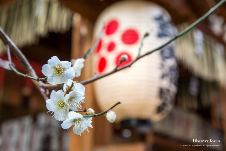 Nishiki Tenmangu shrine kyoto (1)
