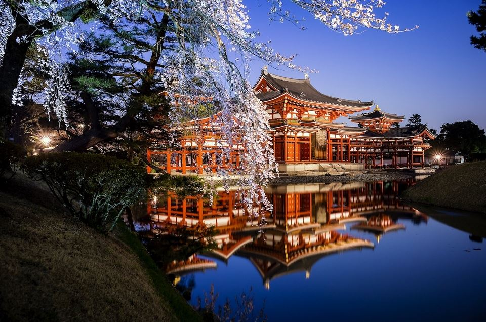Special Night Visit in spring at Byodoin Temple