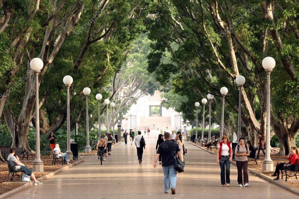 depositphotos_13830580-stock-photo-walkway-hyde-park-sydney-australia