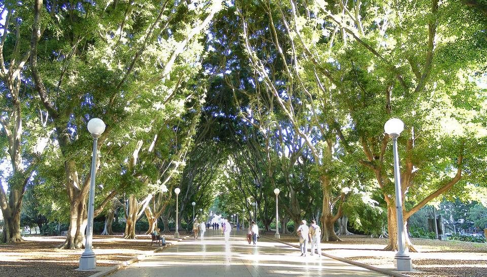 hyde park sydney (1)