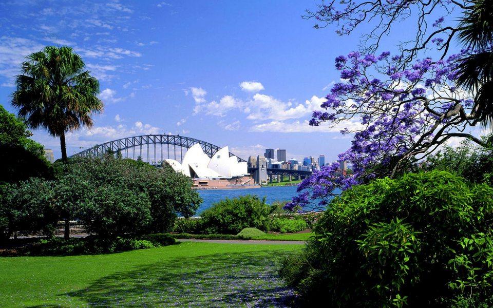 sydney-royal-botanic-gardens (1)