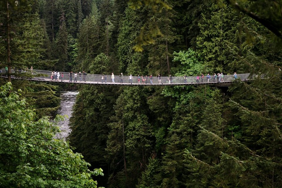 Capilano Suspension Bridge vancouver (1) Picture: vancouver island travel blog.