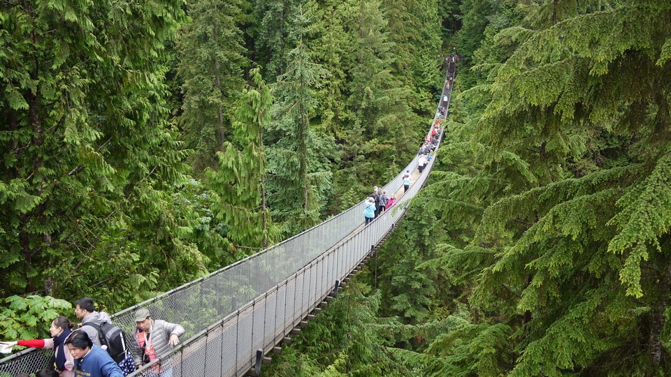 Capilano Suspension Bridge vancouver (1)