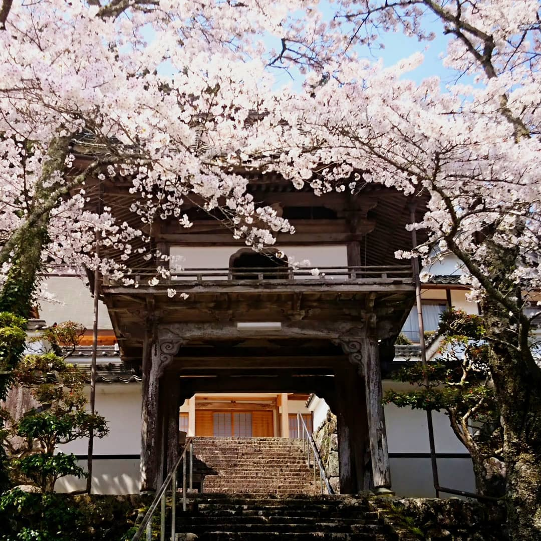 Gyokurinji Temple is also one of Yanaka's hidden treasures.
