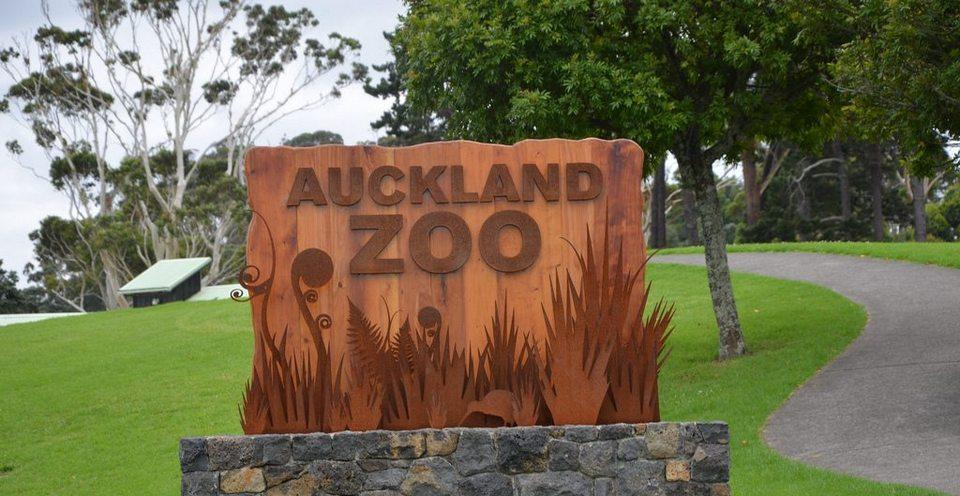 1 Auckland Zoo