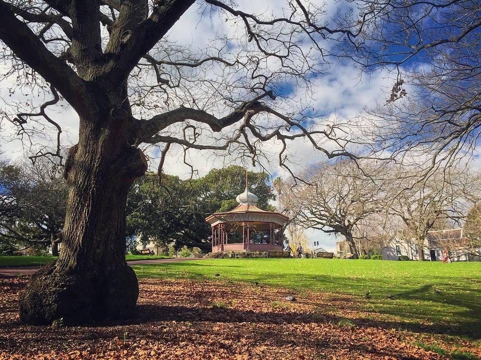Albert park auckland.3