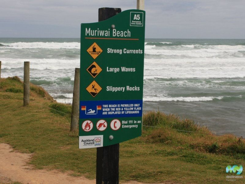 Muriwai beach auckland.3