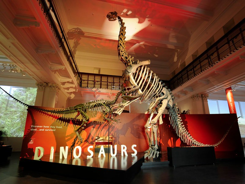 australian museum sydney (1)