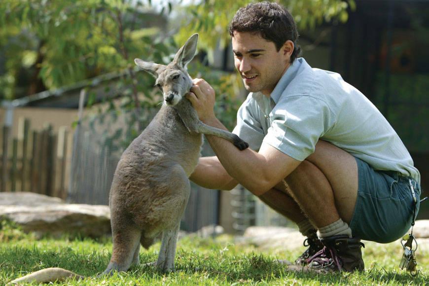 3Taronga Zoo Sydney (1)