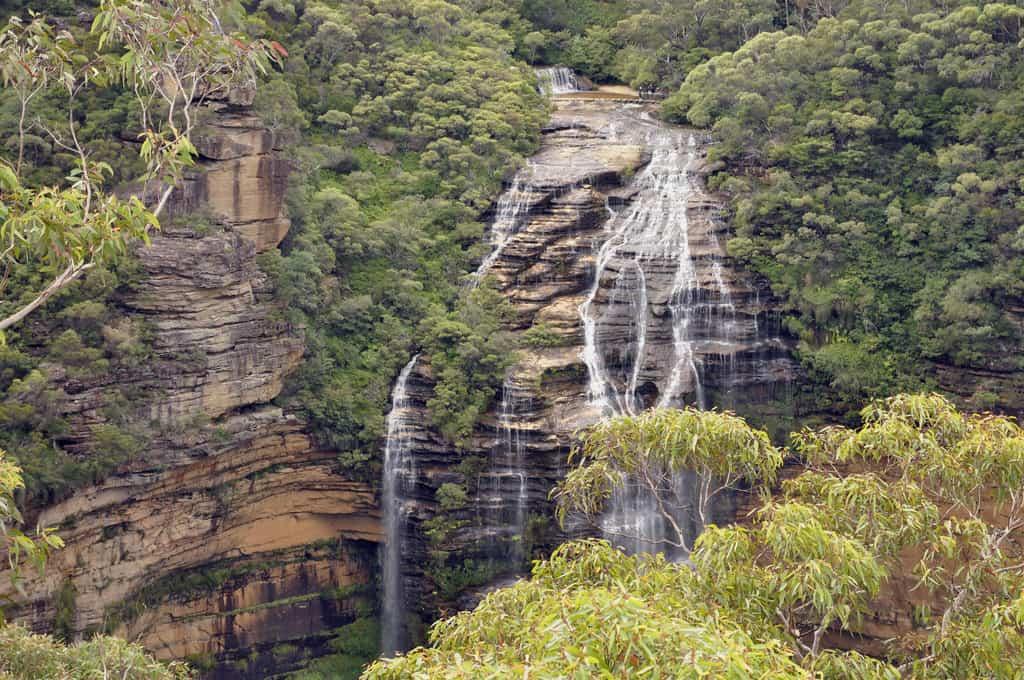 Wentworth Falls blue mountain park