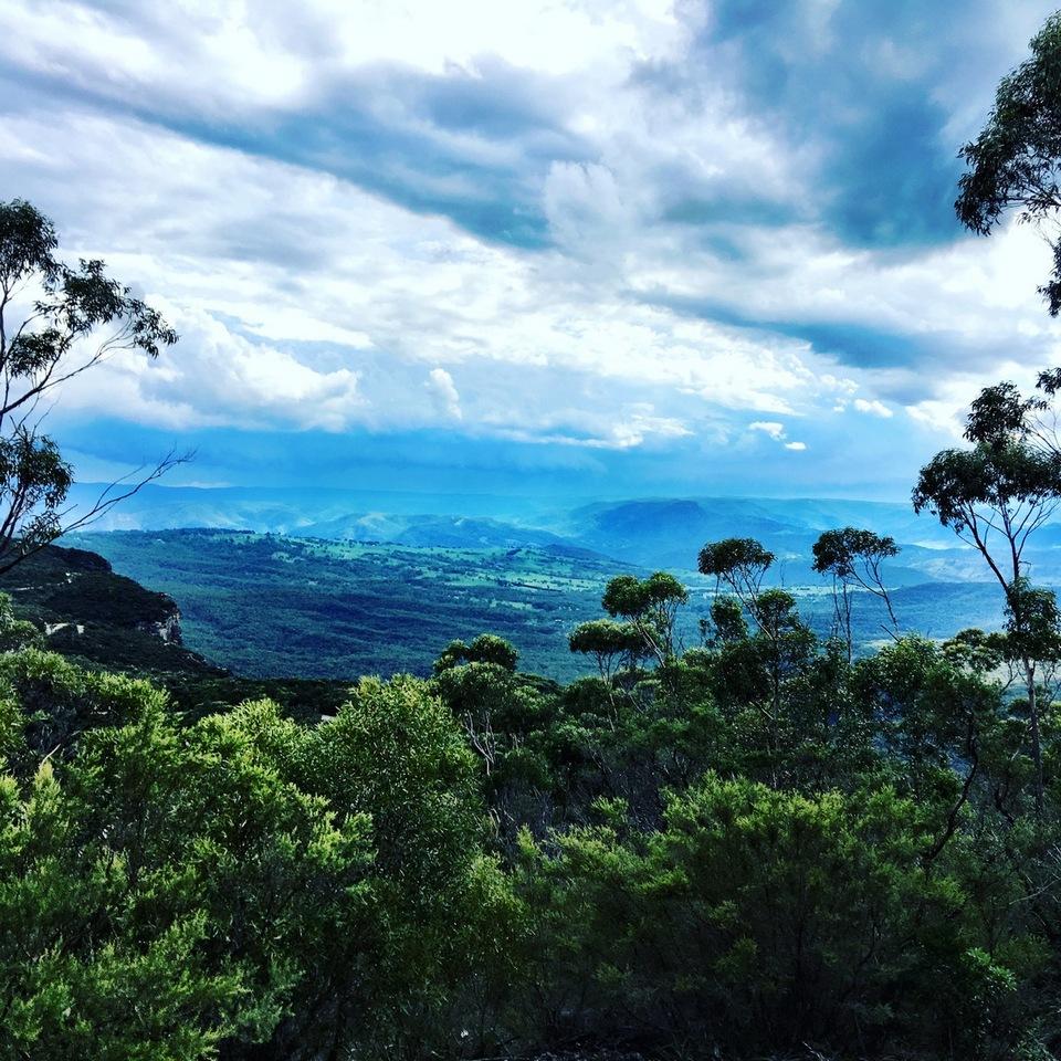 blue mountains park sydney.3