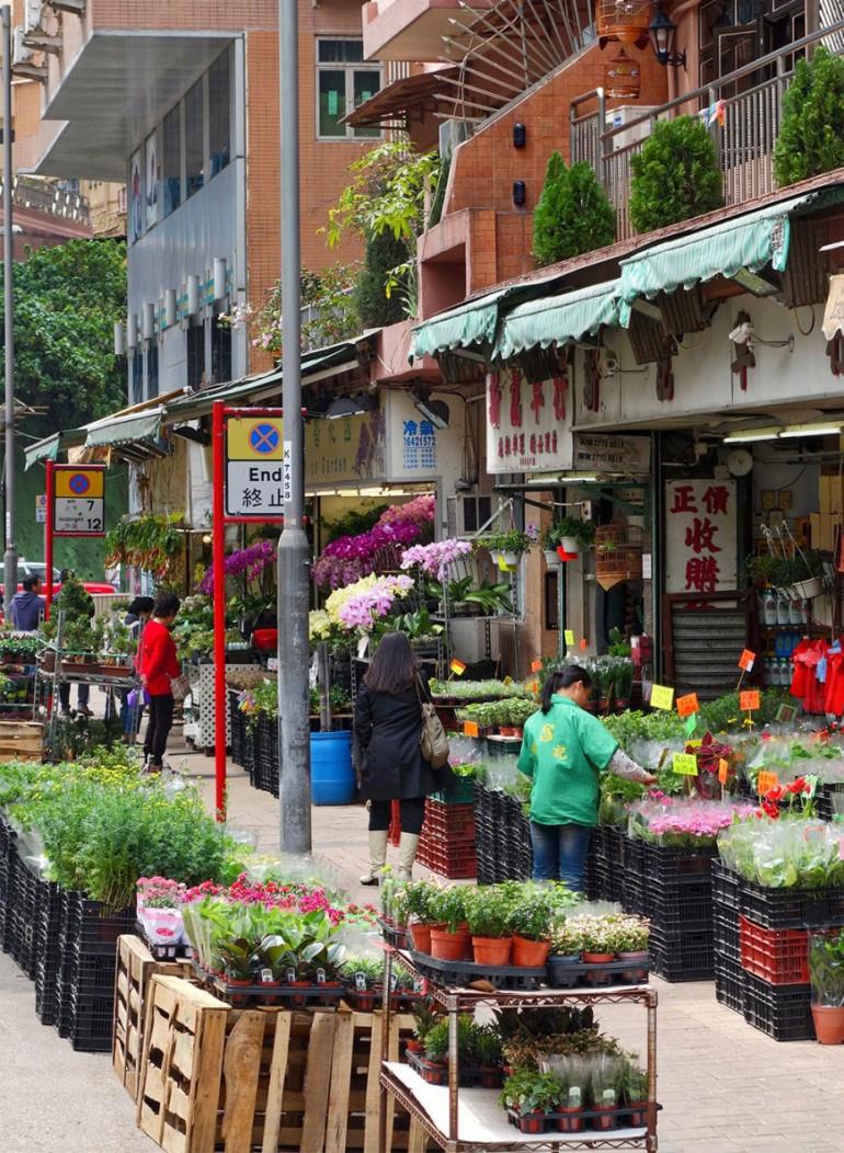 hong-kong-flower-market-bird-market-starting-with-a-blog-12-870x1189-770x1052