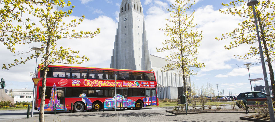 reyjkravik bus tour Hoppari-3.3