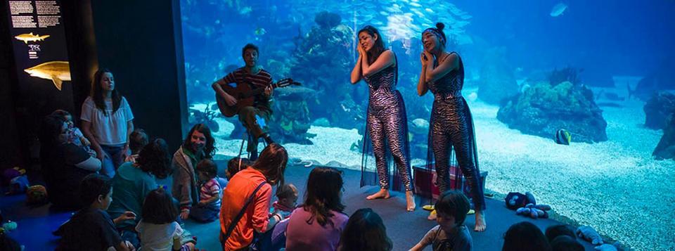 Oceanário de Lisboa aquarium (1)