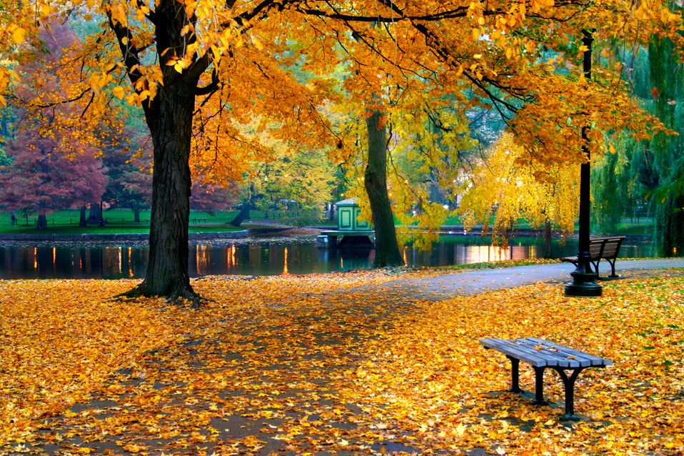 autumn Boston city guide, When is the best time to travel to Boston