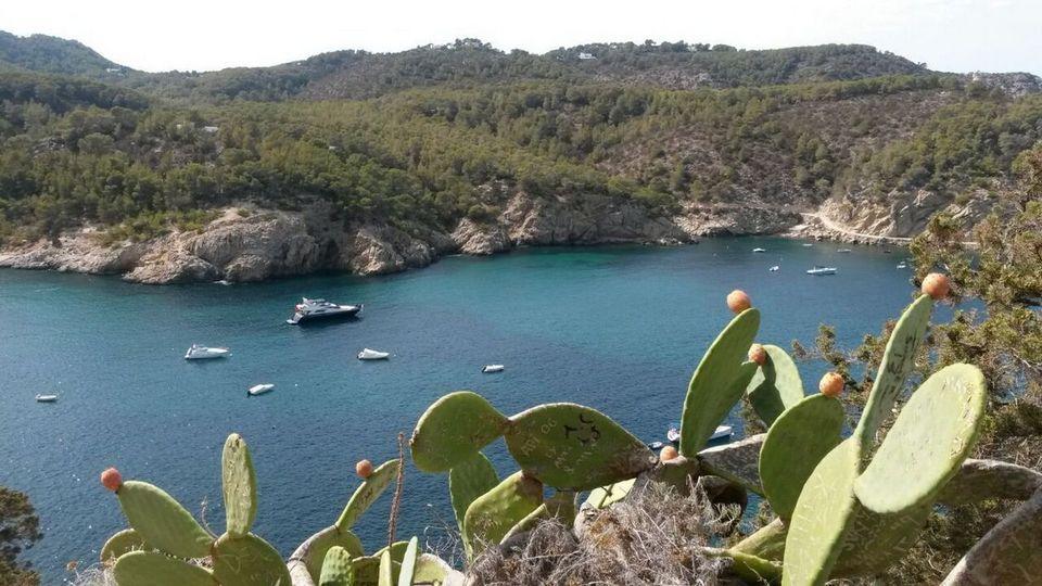 Cova de Can Marçà beach.1