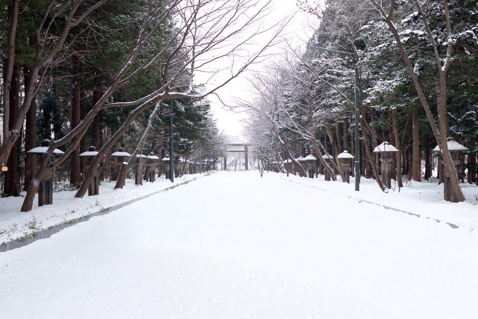 Sapporo in winter22