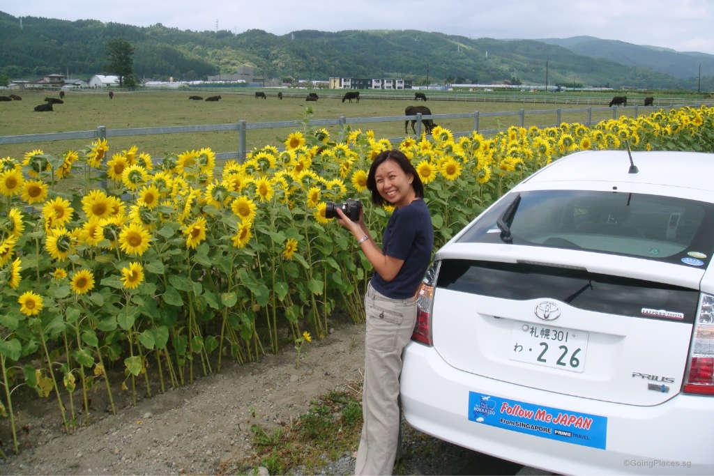 self drive to hokkaido